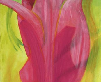 Elusive Tulip