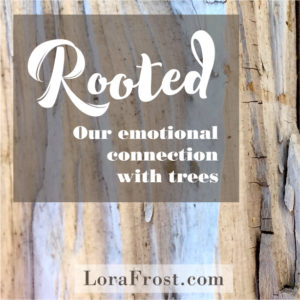 Rooted: Our Emotional Connection With Trees